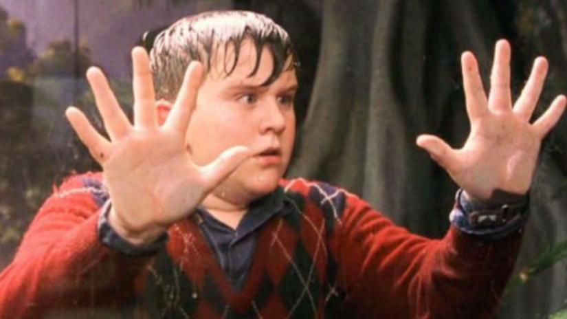 Harry Potter: Así luce ahora el molestoso primo de Harry