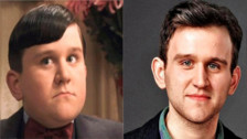 Harry Melling:  Dudley Dursley